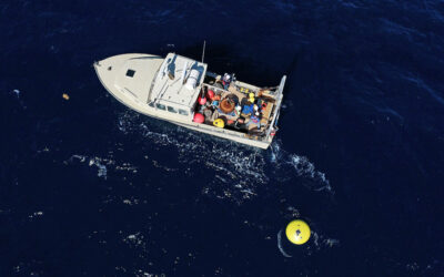 Muglia Research Group Collaborates with NOAA, SECOORA, FACT to Deploy Offshore Buoy