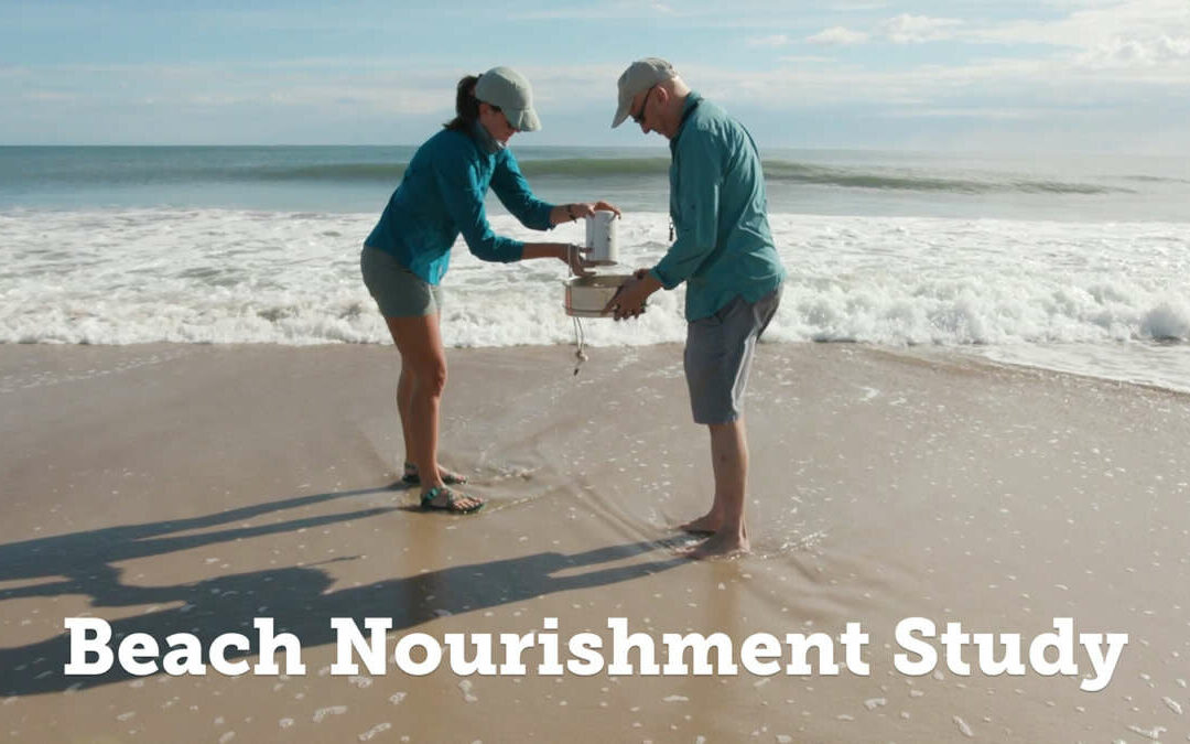 New Research Highlight Video:  Long-term Impacts of Beach Nourishment on Shoreline Ecosystems